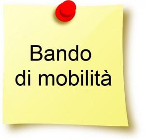 AVVISO DI MOBILITÀ VOLONTARIA AI SENSI DELL'ART. 30 DEL D.LGS. 165/2001 PER LA COPERTURA DI N. 1 POSTO DI ISTRUTTORE AMMINISTRATIVO, CATEGORIA C, CON RAPPORTO DI LAVORO A TEMPO PIENO ED INDETERMINATO